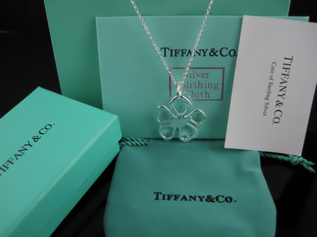 Tiffany&Co Necklaces 123