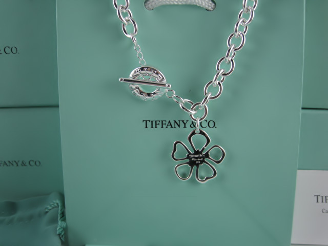 Tiffany&Co Necklaces 127