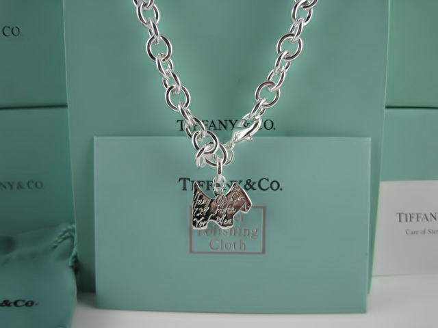 Tiffany&Co Necklaces 130
