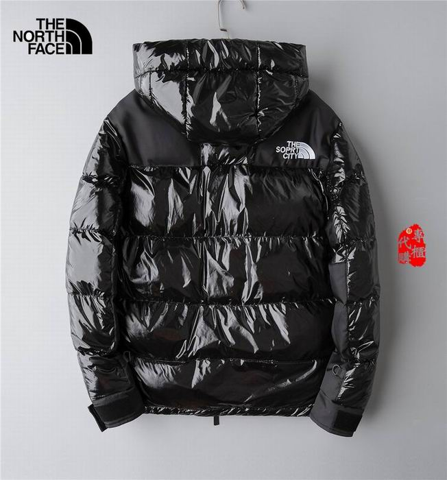 The North Face Men's Outwear 223